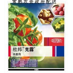 72%霜脲锰锌(克露)(限常熟地区) 零售价 100ML